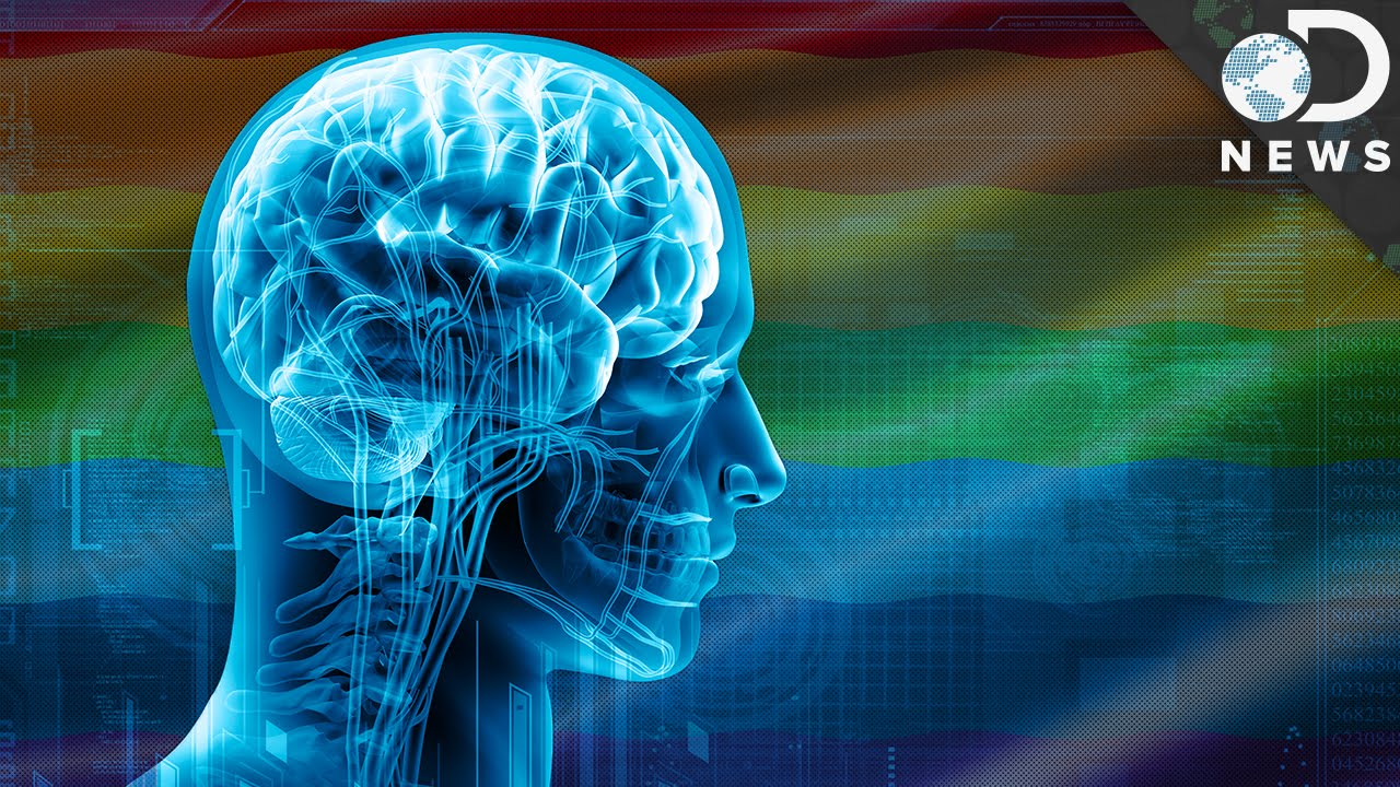 Is There Something Unique about the Transgender Brain? - Scientific American Thinks So